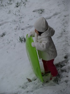 MK and the sled